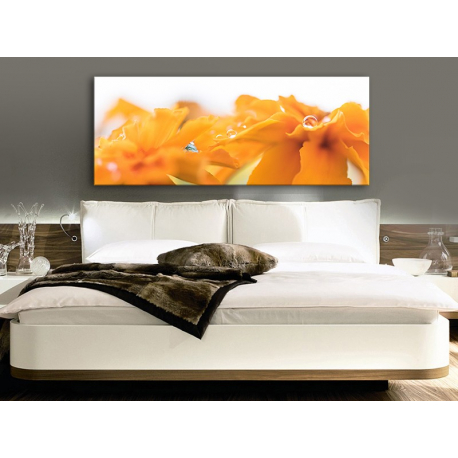 Water Drops & Yellow Petals Vízcseppek és virágszirom - vászonkép - 100459