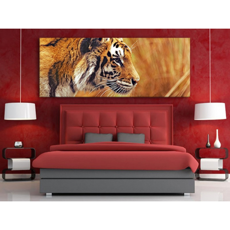 Tiger Watching - Tigris - - vászonkép 100484