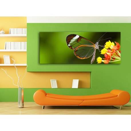 Butterfly Glass Wings - Átlátszó Pillangó Szárnyak - 100490