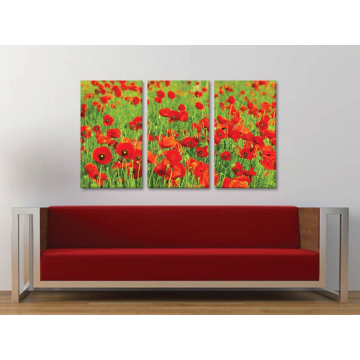 Három részes vászonkép - Red and green - pipacs mezõ - vakrámára feszített vászonkép no. 3a-100151