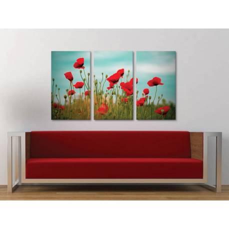 Három részes vászonkép - Poppys and clouds - pipacs és felhõk - 3a-100172 - 1