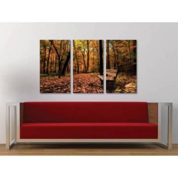 Három részes vászonkép - Autumn silence - csendes õsz vakrámára fõszített võszonkép 3a-100186