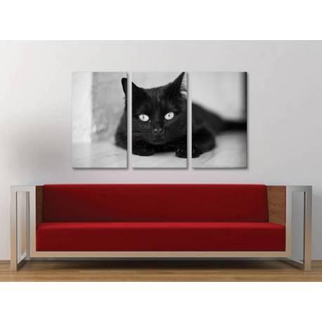Három részes vászonkép - The black cat legend - fekete macska vászonkép 3a-100188 - 1
