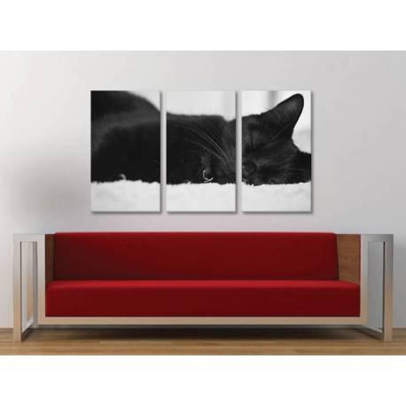 Három részes vászonkép - Sleeping B&W - fekete macska vászonkép 3a-100190