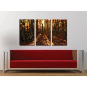 Három részes vászonkép - Autumn forest sunset - napnyugta az õszi erdõben - vászonkép - 3a-100192