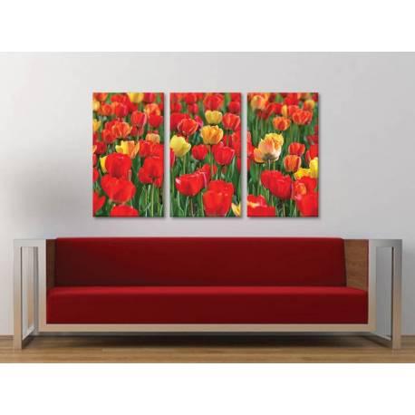 Három részes vászonkép - Tulips wonder - tulipánok - vászonkép 3a-100215