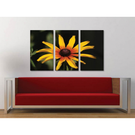 Három részes vászonkép - Yellow flower - sárga virág vászonkép 3a-100233 - 1