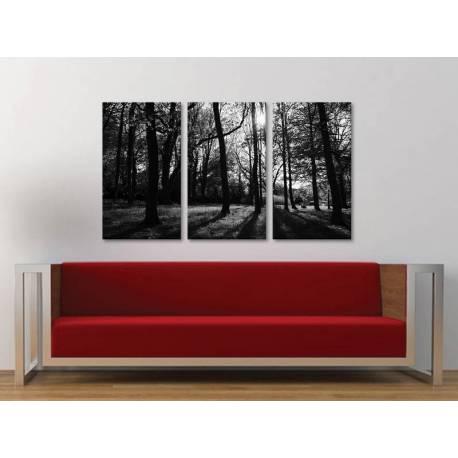 Három részes vászonkép - Forest lights black & white - erdei fények fekete-fehér vászonkép 3a-100245