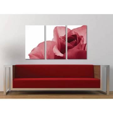 Három részes vászonkép - Bloomy rose - piros rózsa - vászonkép 3a-100288