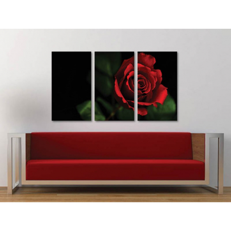 Három részes vászonkép - Black & Red - vörös rózsa vászonkép 3a-100298 - 1