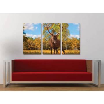 Három részes vászonkép - The Deer - szarvas vászonkép 3a-100325