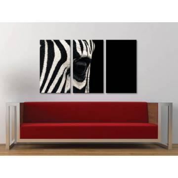 Három részes vászonkép - Black and white - zebra vászonkép 3a-100358