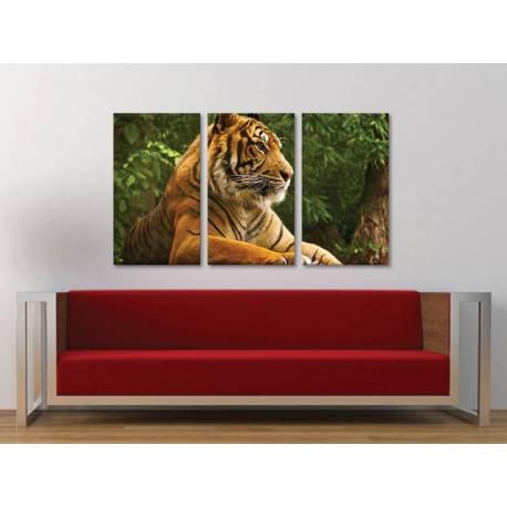 Három részes vászonkép - Respect the tiger - tigris vászonkép 3a-100391 - 1
