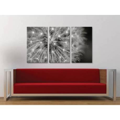 Három részes vászonkép - Dandelion Black&White - pitypang fekete fehér vászonkép - 3a-100399