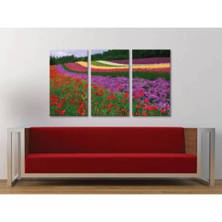 Három részes vászonkép - Colorful flower lines - színes virágok vászonkép 3a-100420