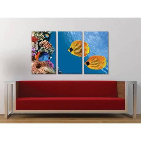 Három részes vászonkép - Underwater - tengeri díszhalak vászonkép 3a-100425 - 1