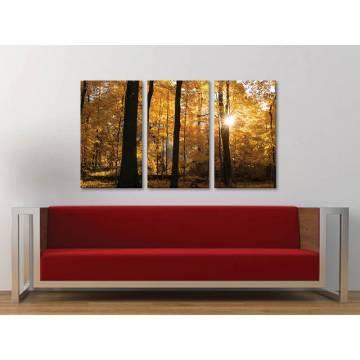 Három részes vászonkép - Golden Rays - Arnyló napsugarak - vakrámára feszített vászonkép 3a-100436