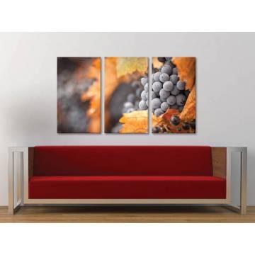 Három részes vászonkép - Red Grape - Szõlõfürt - vászonkép 3a-100463