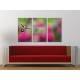 Három részes vászonkép - The Hummingbird - Kolibri - vászonkép 3a-100486 - 1