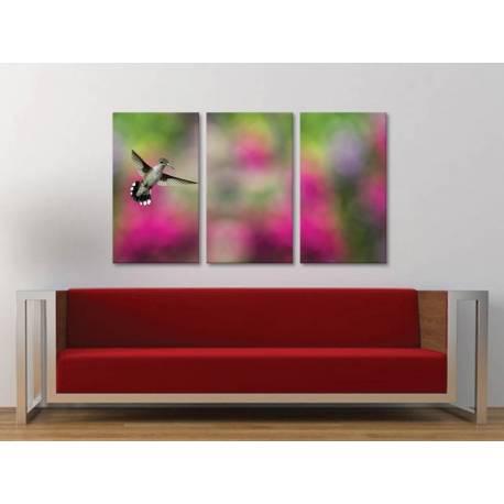 Három részes vászonkép - The Hummingbird - Kolibri - vászonkép 3a-100486